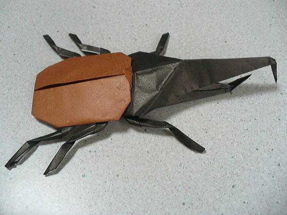 飛行機 折り紙 折り紙 カブトムシ 折り方 : divulgando.net